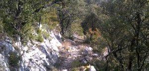 Camí de la vall d'Escales, Montagut i Oix