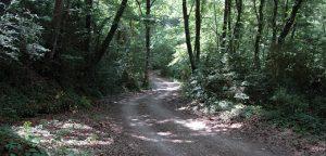 La vall del Corb, Les Preses