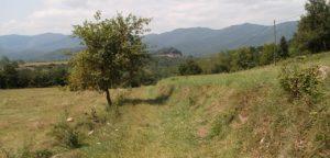 Calçada romana del Capsacosta, Via Anna, Vall de Bianya