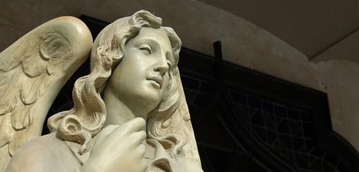 Museu dels Sants, Olot