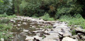 Pas sobre el riu Fluvià, Sant Joan les Fonts