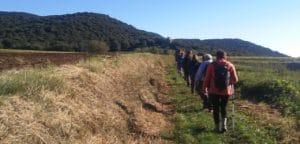 Ruta dels gorgs de Santa Pau, camí Sant Martí Vell